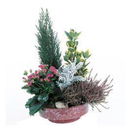 fleurs pour cimetière